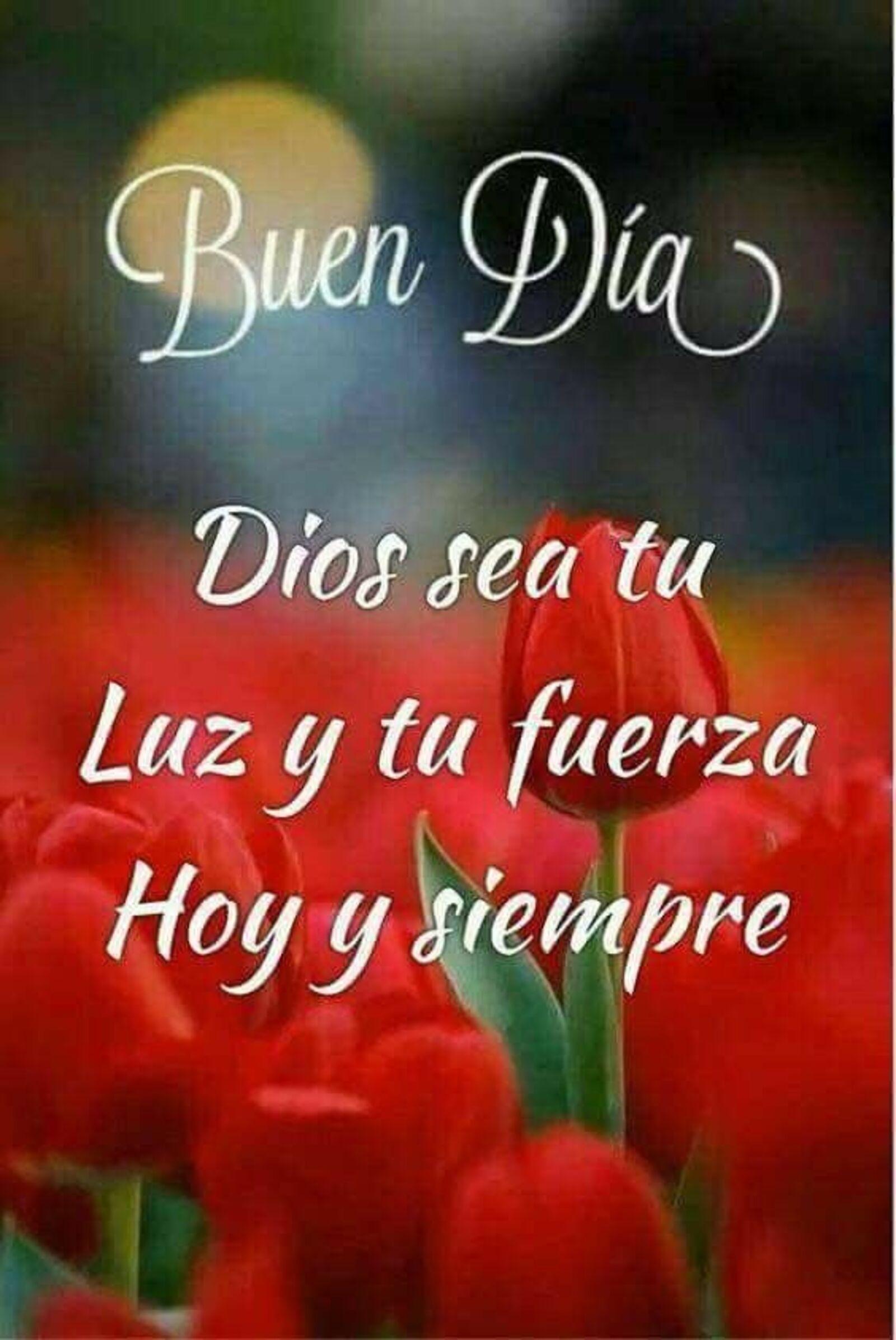 Buen día Dios sea tu luz y tu fuerza hoy y siempre
