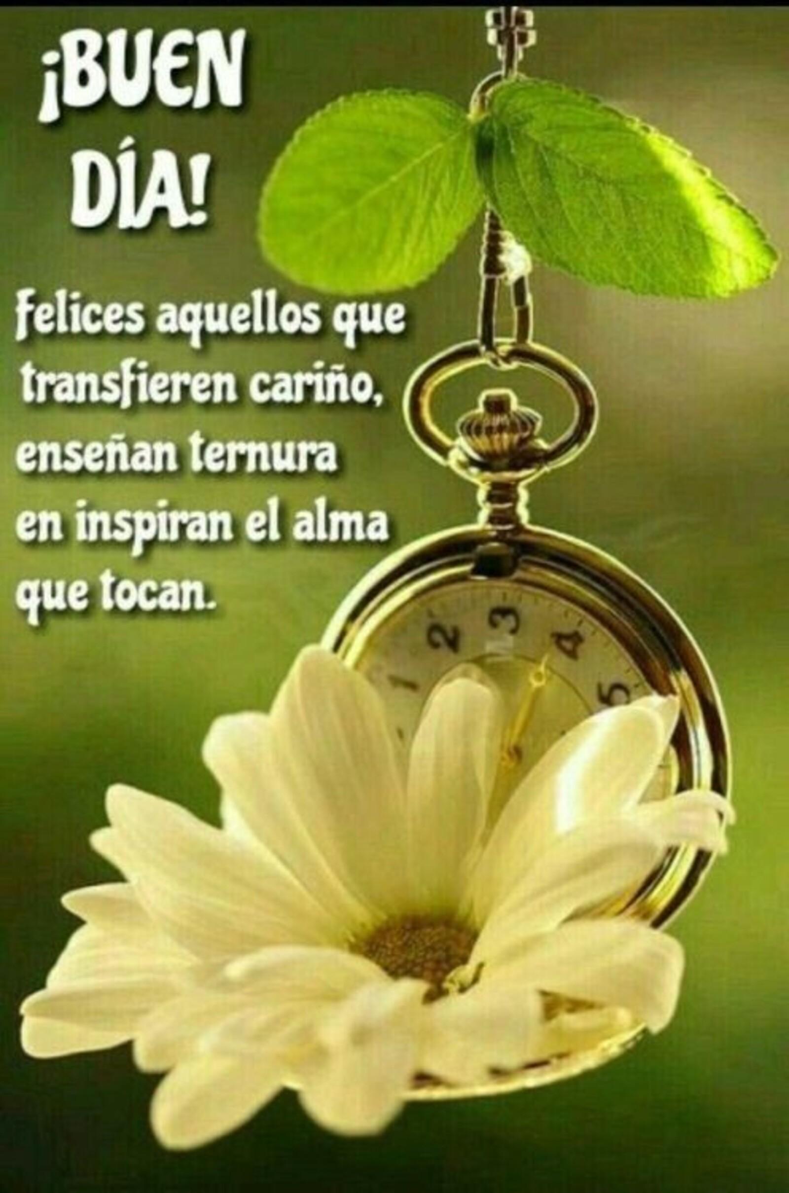 Buen día! Felices aquellos que transfieren cariño, enseñan ternura en inspiran el alma que tocan.