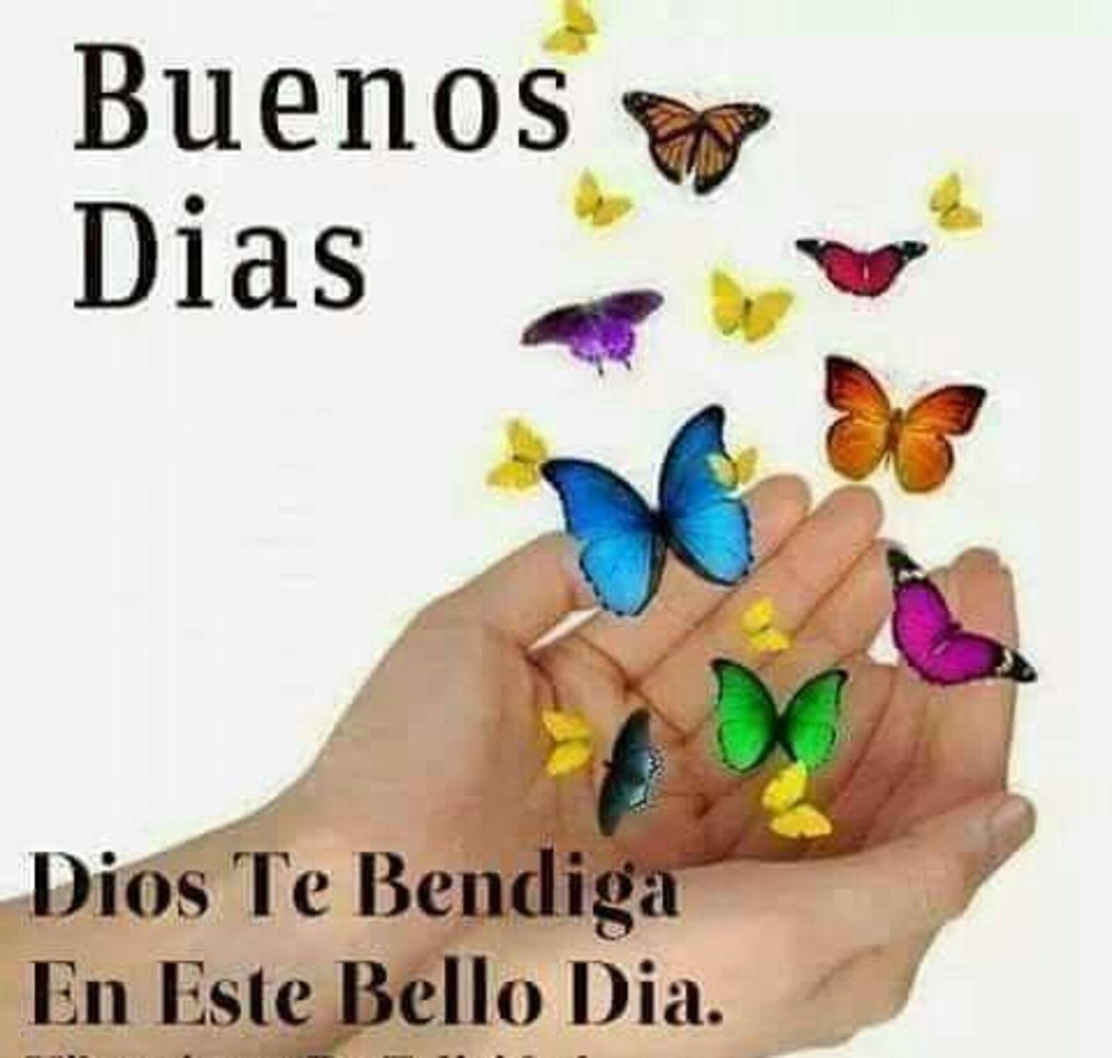 Buenos días Dios te bendiga en este bello dia