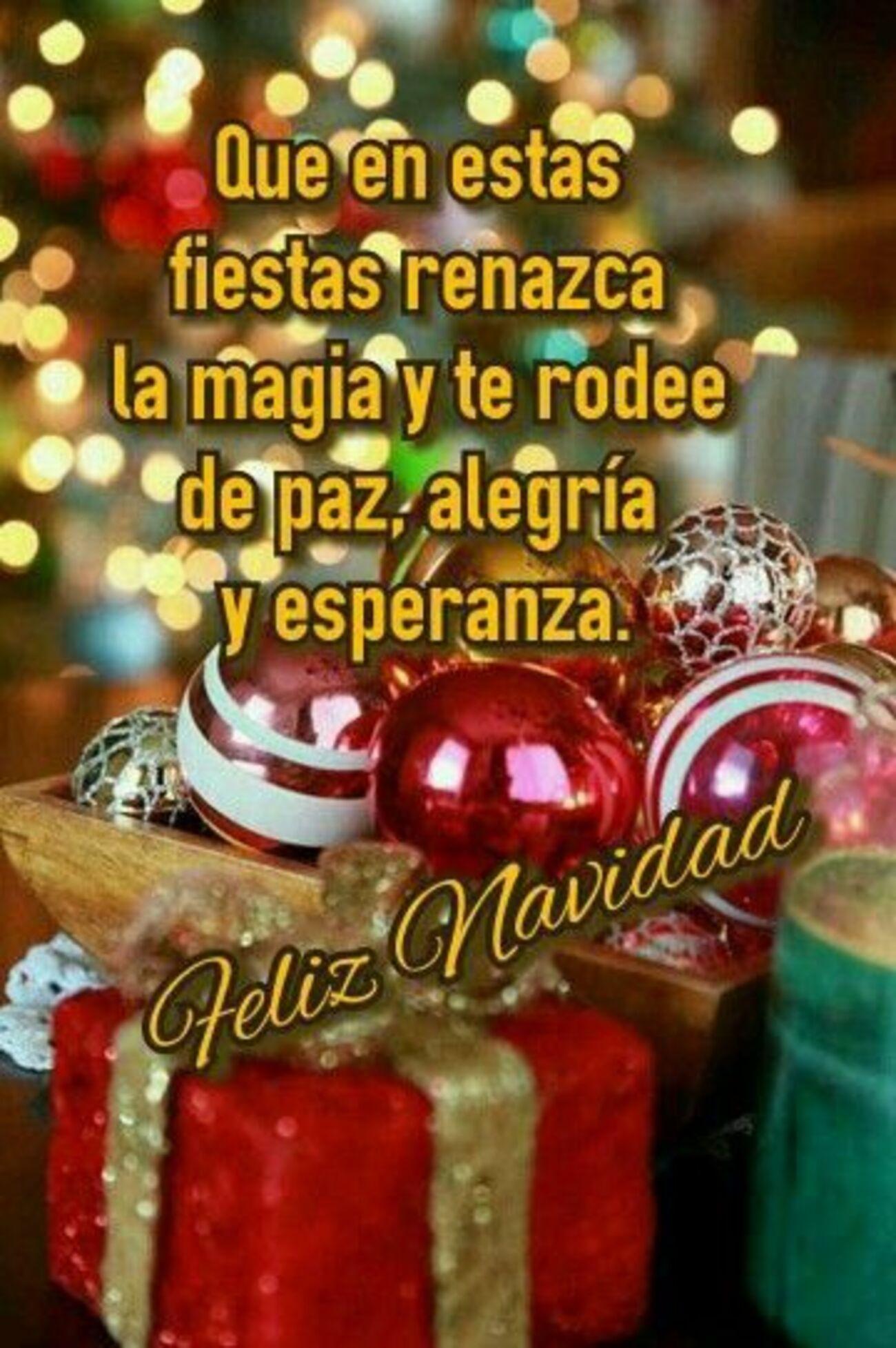 Que en estas fiestas renazca la magia y te rodee de paz, alegría y esperanza. Feliz Navidad