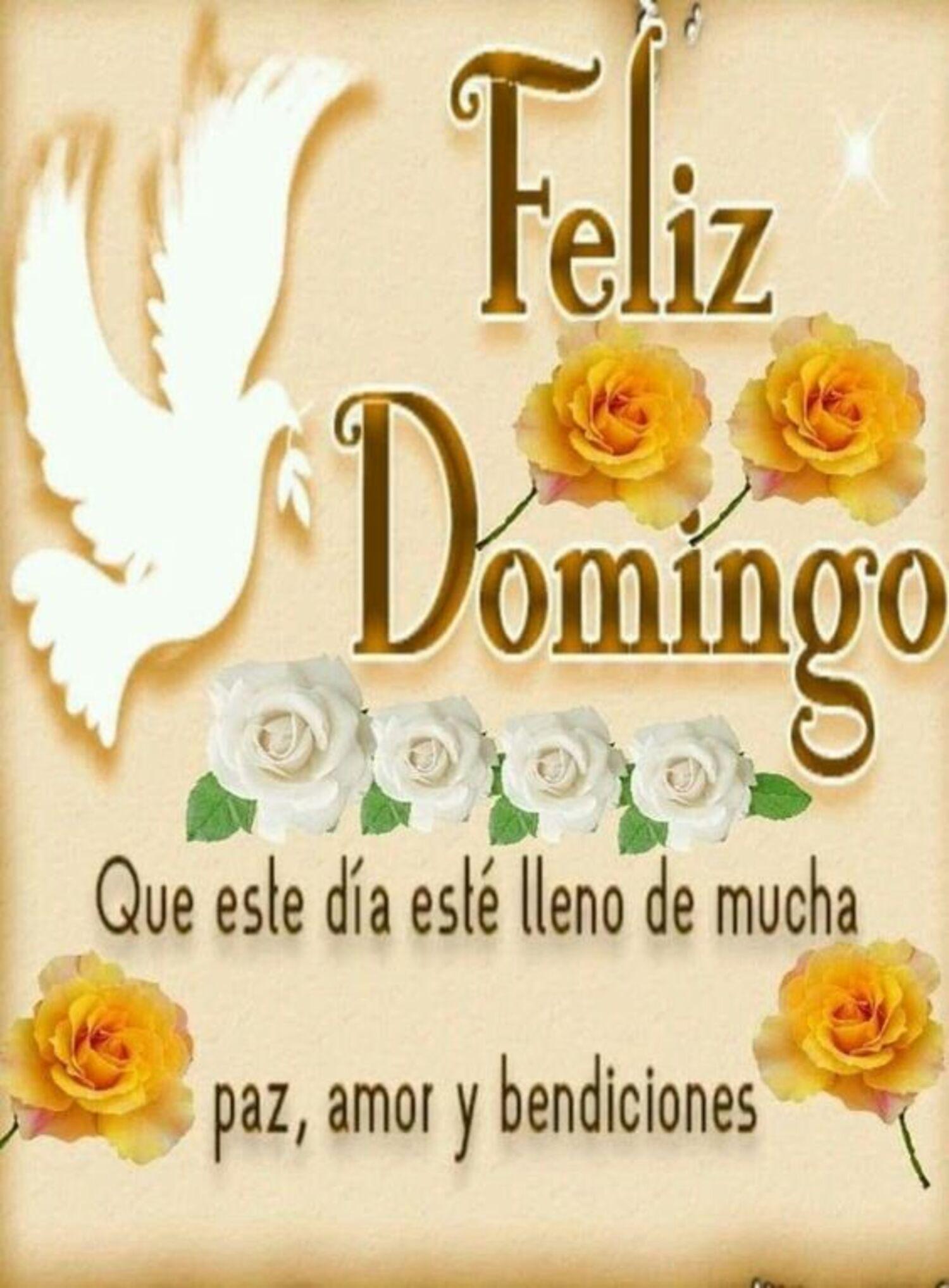 Feliz domingo que este día esté lleno de mucha paz, amor y bendiciones