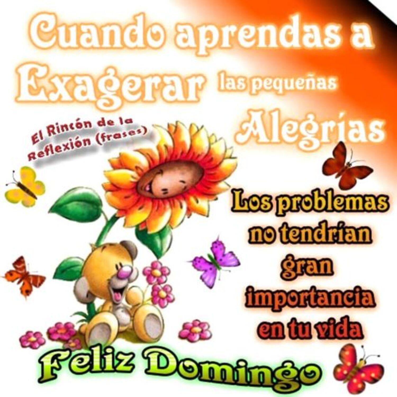 Cuando aprendas a exagerar las pequeñas alegrias los problemas no tendrian gran importancia en tu vida...feliz domingo