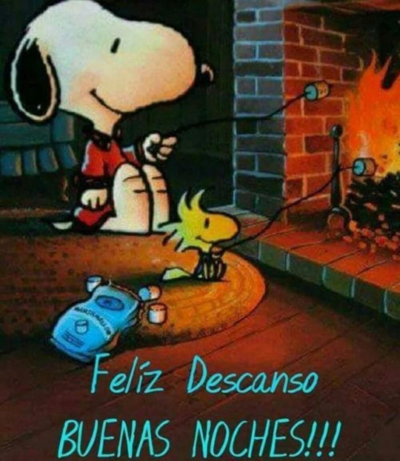 Feliz descanso buenas noches!!