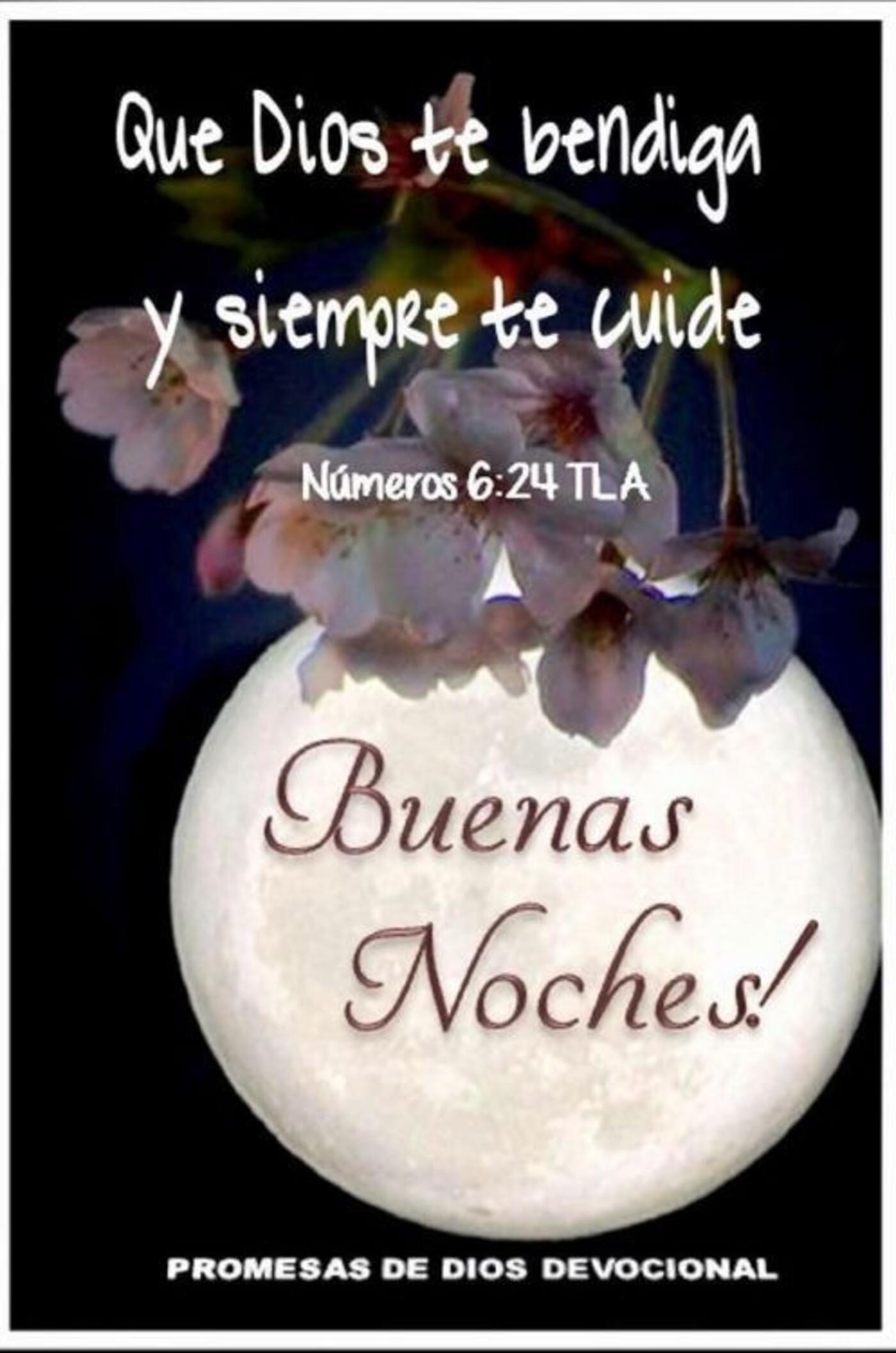 Que Dios te bendiga y siempre te cuide. Buenas Noches!!
