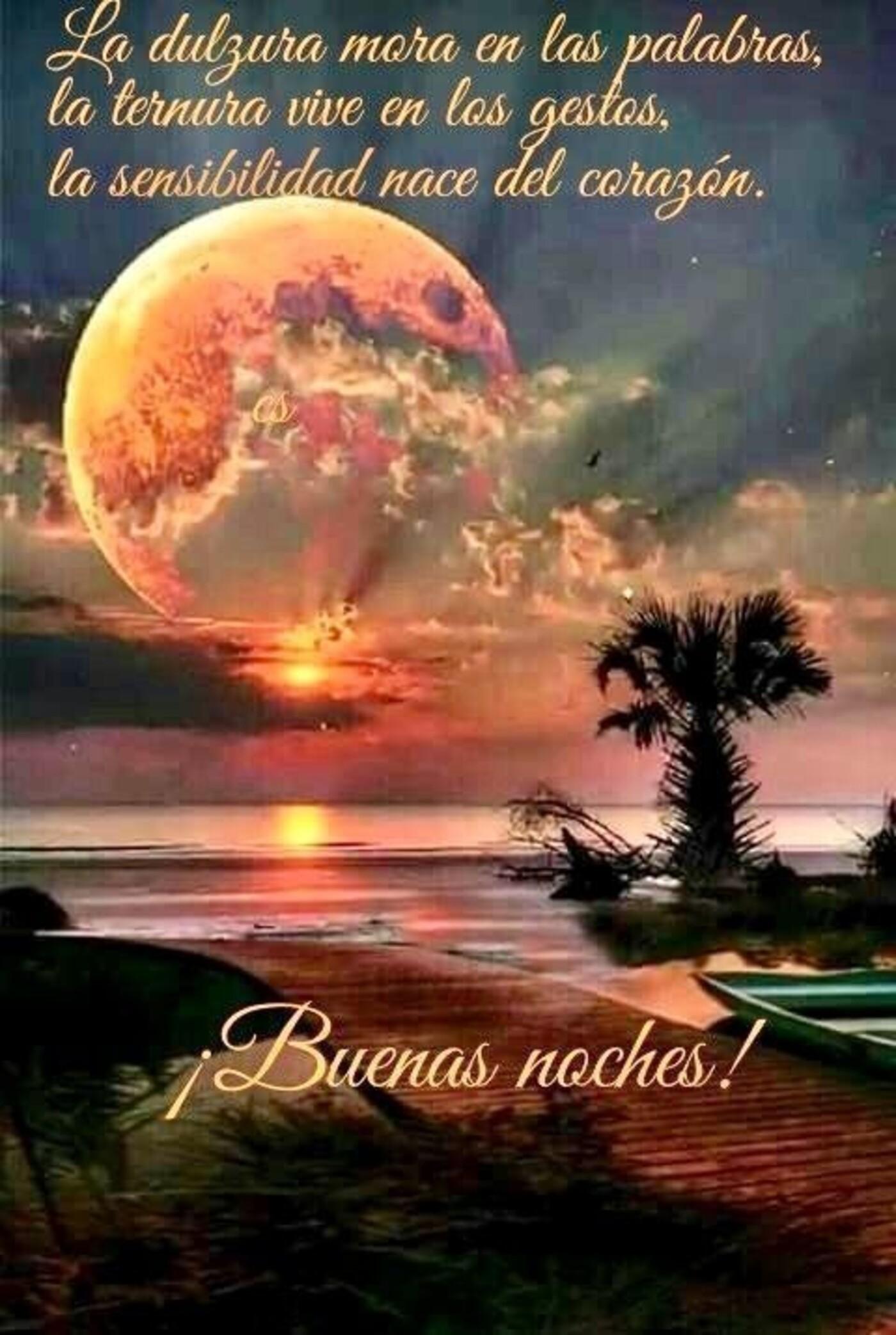 La dulzura mora en las palabras, la ternura vive en los gestos, la sensibilidad nace nel corazón. Buenas Noches!!