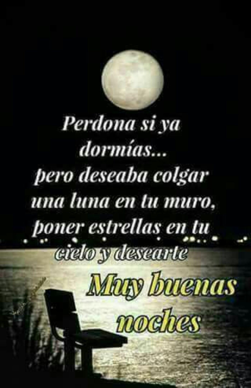 Perdona si ya dormías...pero deseaba colgar una luna en tu muro, poner estrellas en tu cielo y desearte muy buenas noches