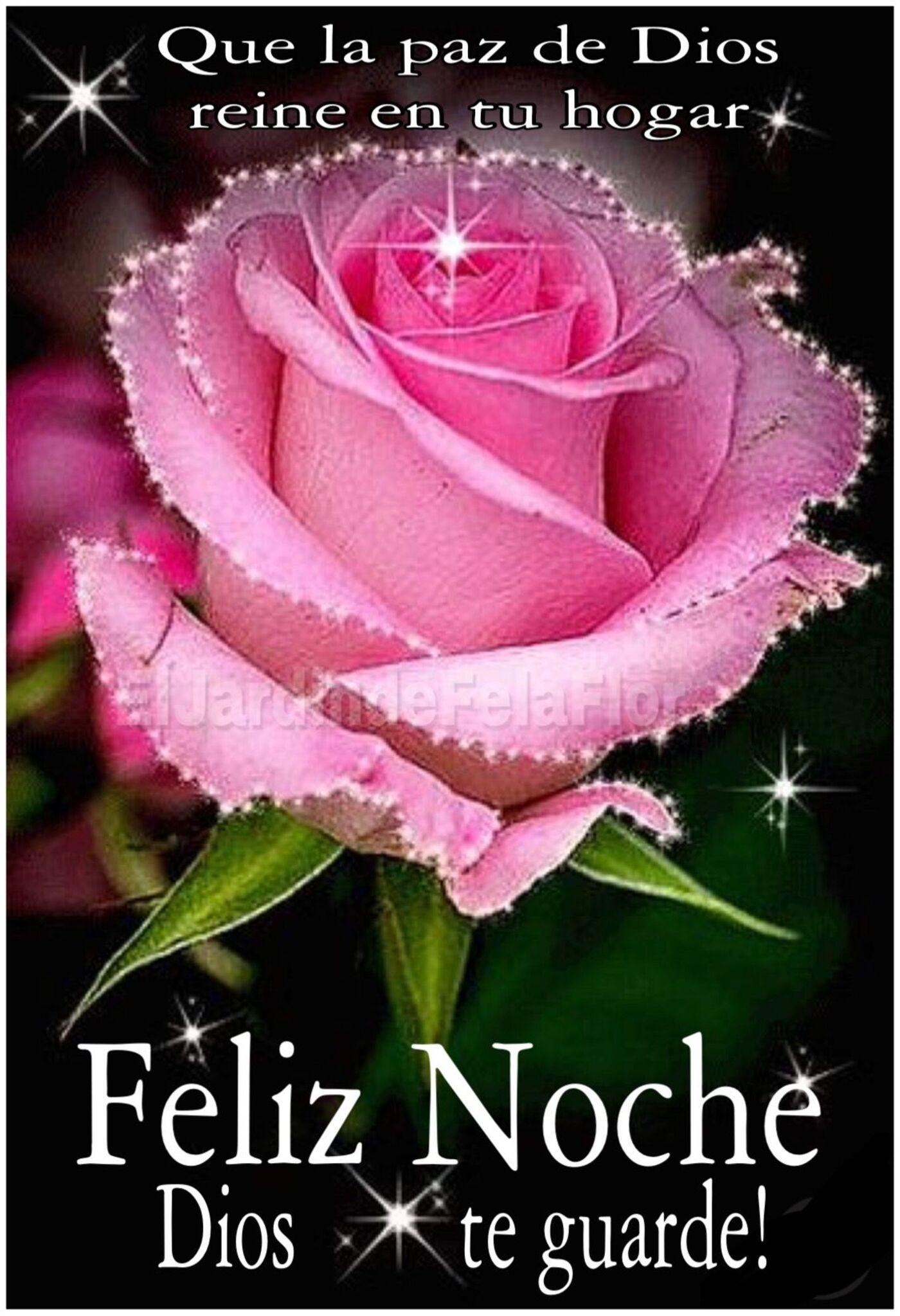 Que la paz de Dios reine en tu hogar! Feliz noche Dios te guarde!
