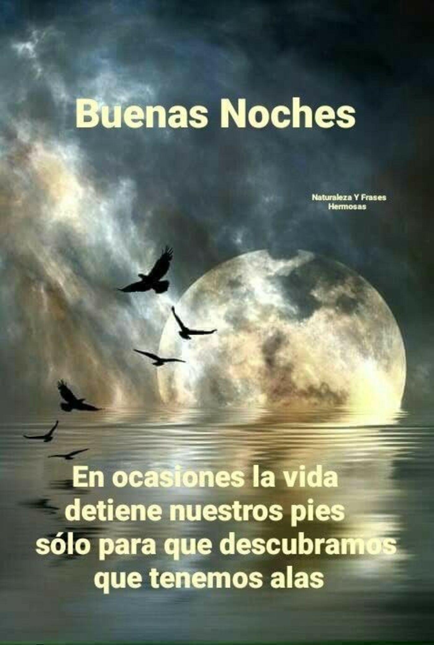 Buenas Noches en ocasiones la vida detiene nuestros pies solo para que descubramos que tenemos alas