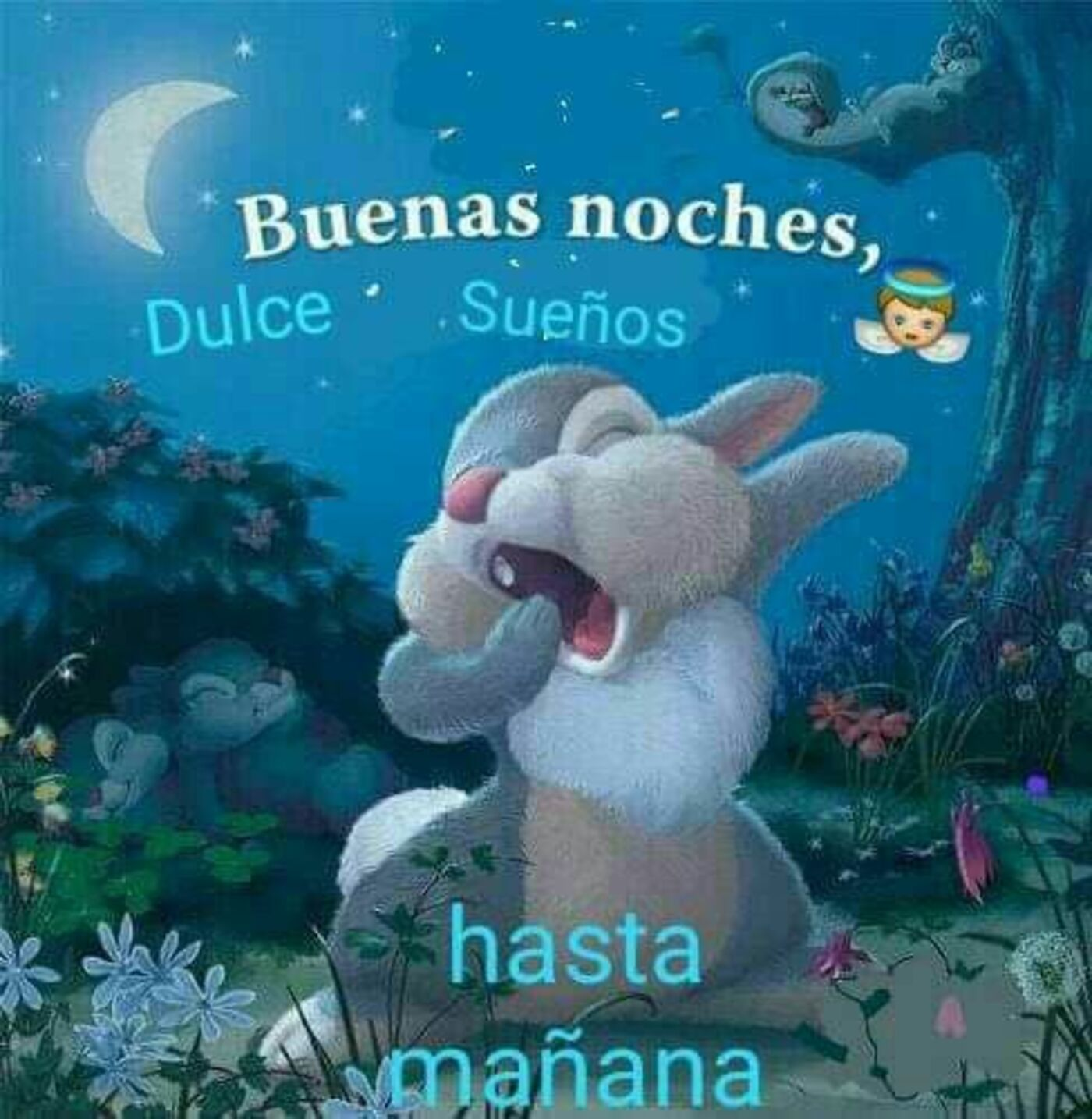 Buenas noches dulce sueños, hasta mañana