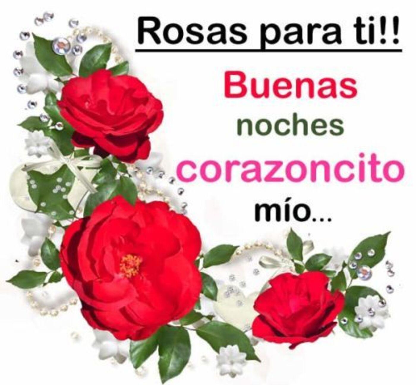 Rosas por ti!! Buenas noches corazoncito mio...
