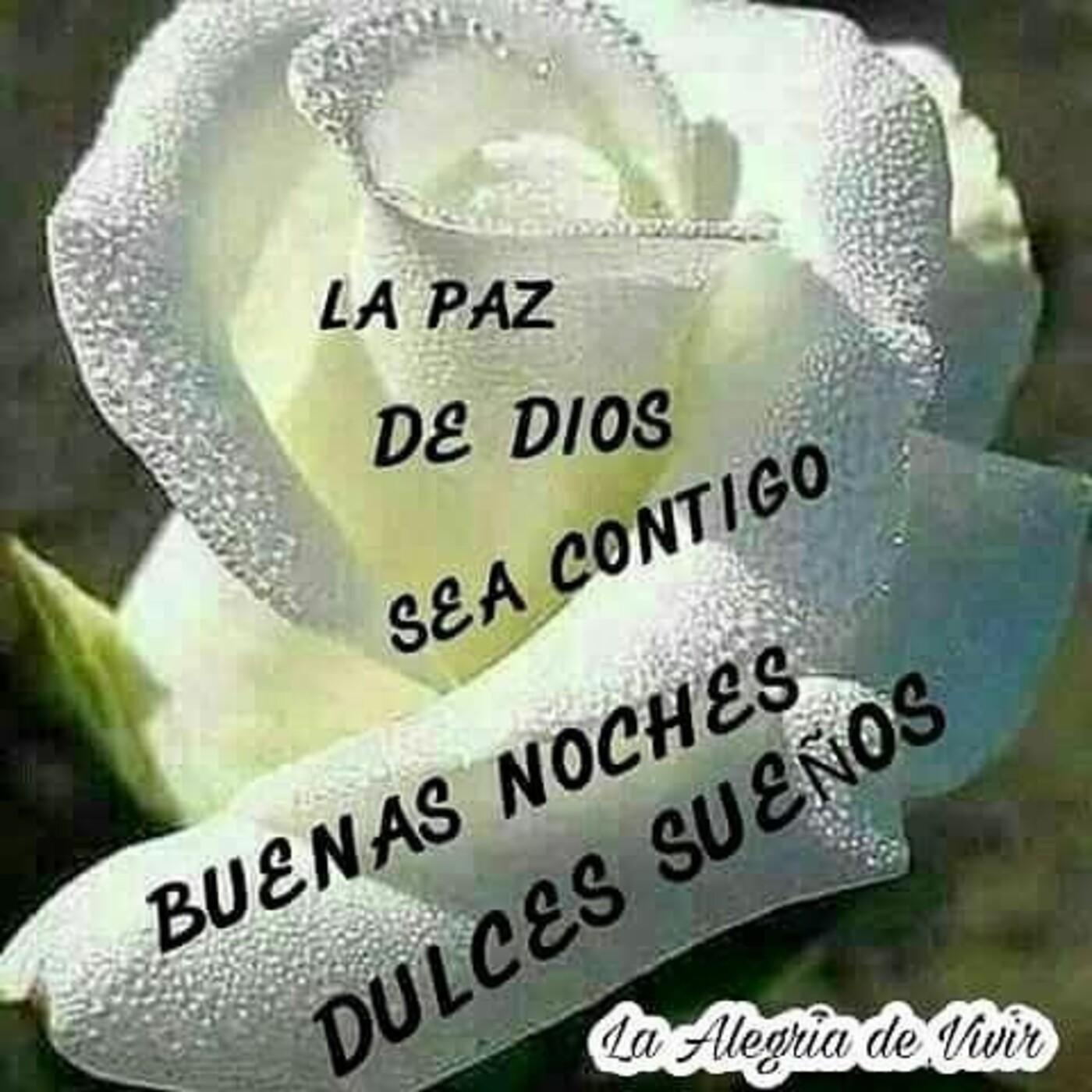La paz de Dios sea contigo Buenas Noches Dulces sueños