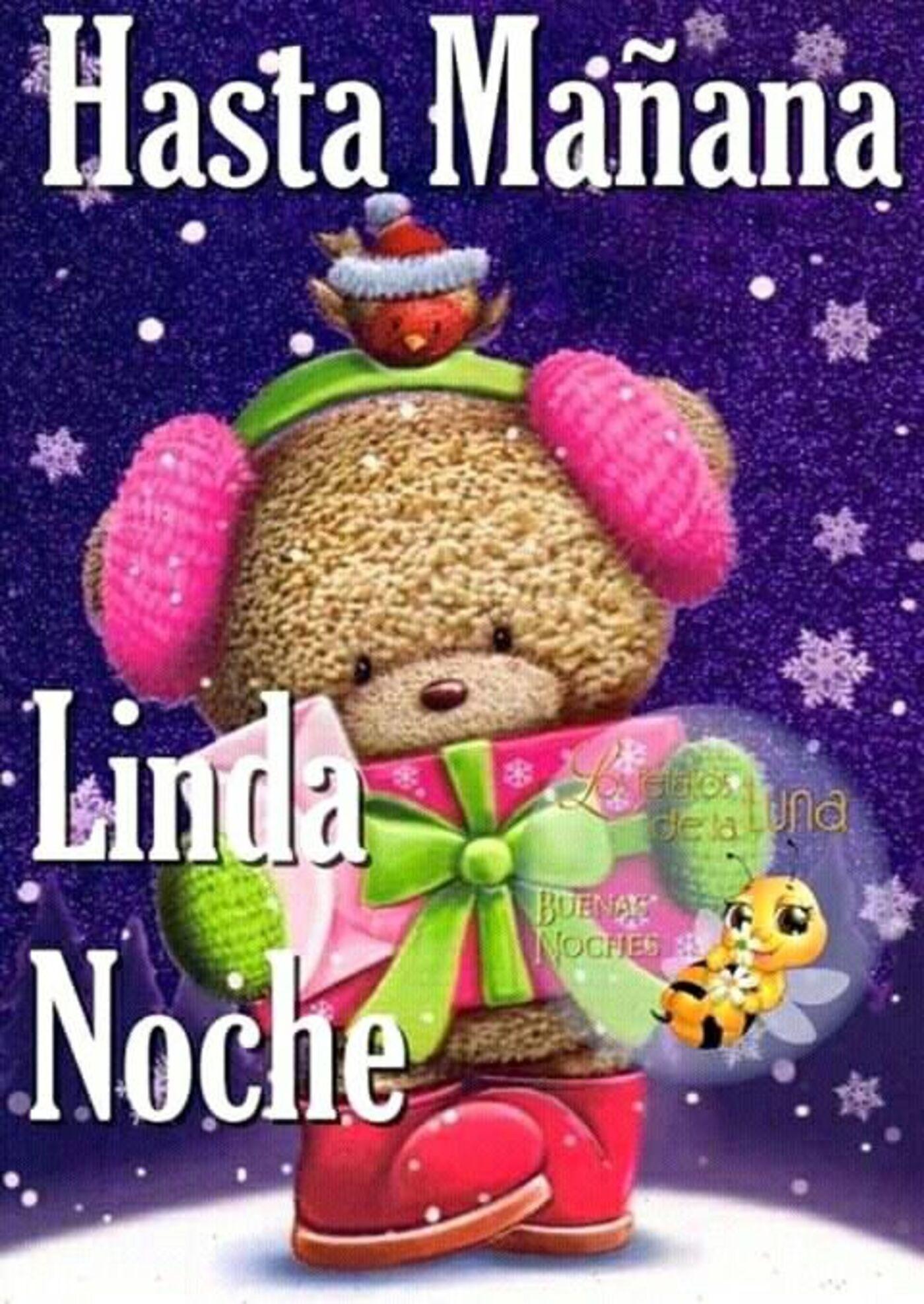 Hasta mañana, Linda Noche