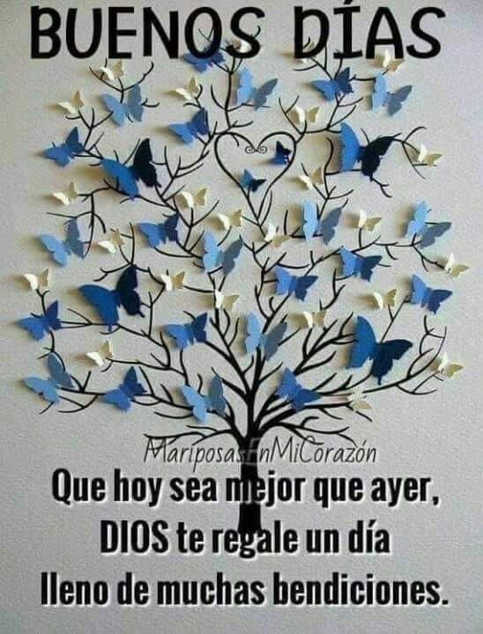 Buenos Días. Que hoy sea mejor que ayer. Dios te regale un día lleno de muchas bendiciones.