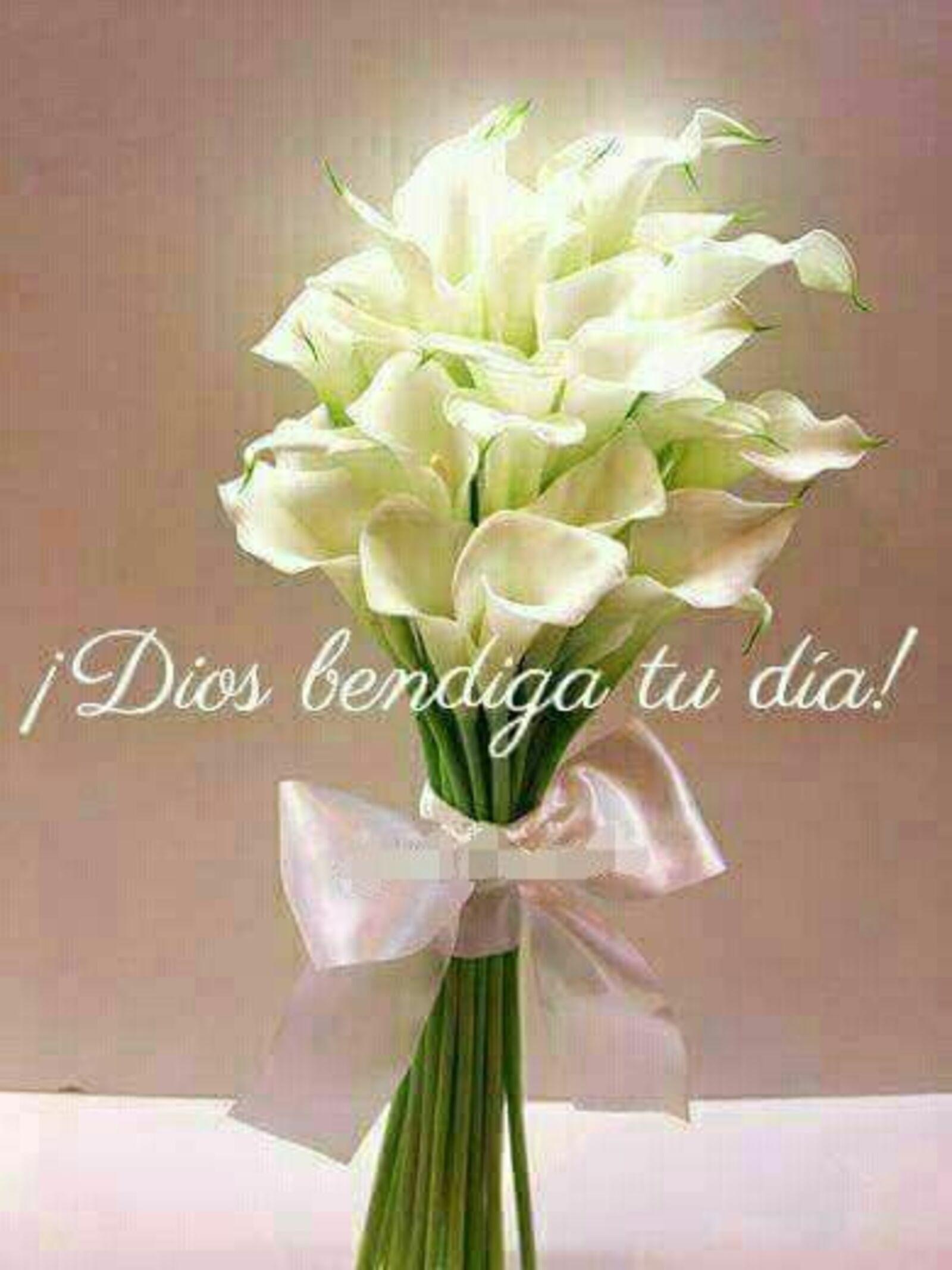 ¡Dios bendiga tu día!