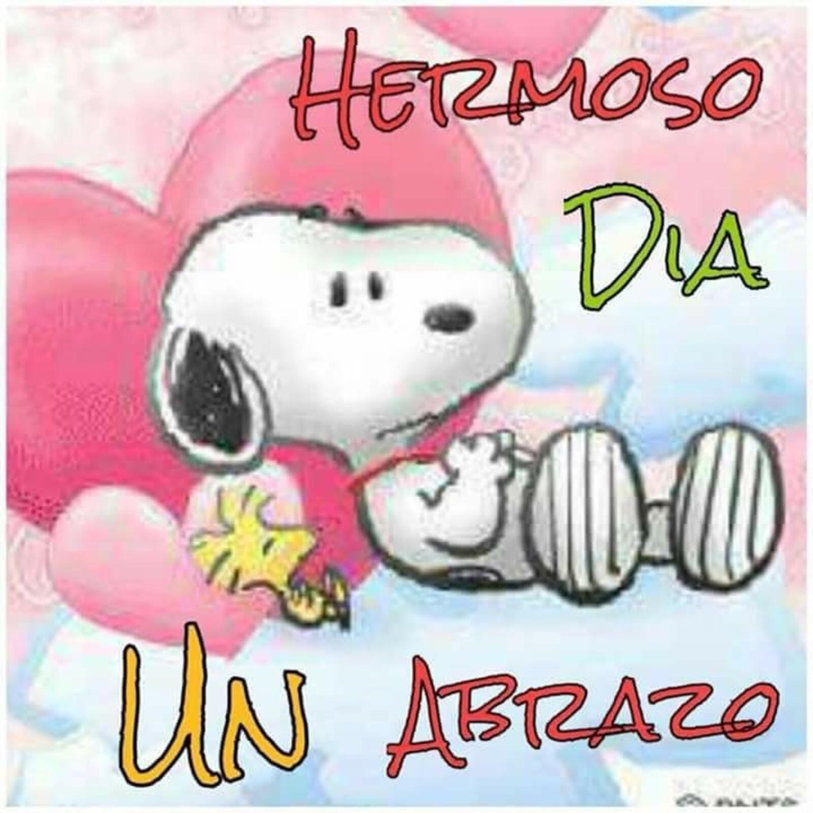 """""""Hermoso dia, un abrazo"""" - Snoopy"""