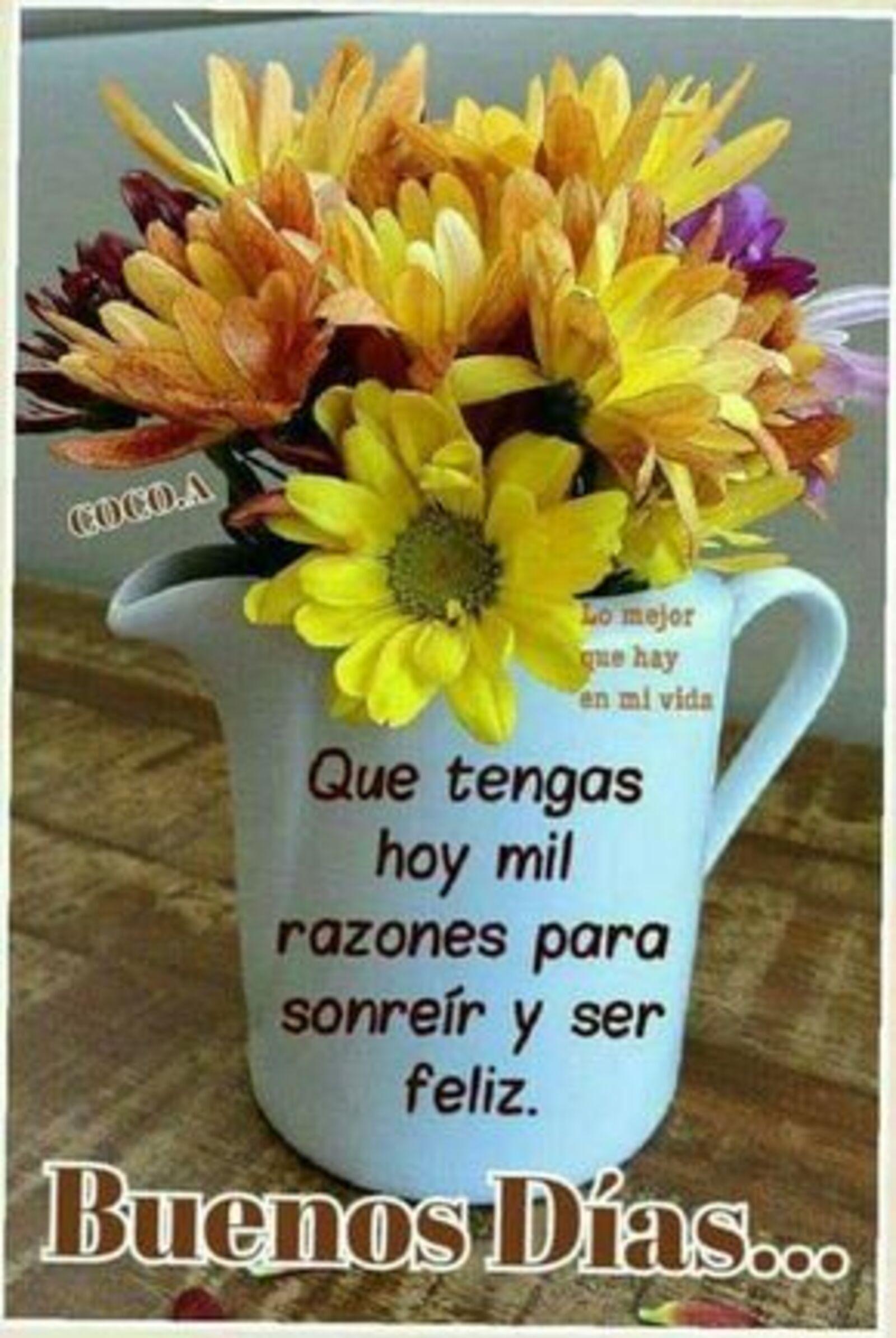 Que tengas hoy mil razones para sonreír y ser feliz. Buenos días