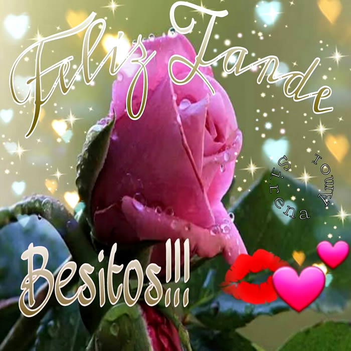 Feliz Tarde. Besitos !!