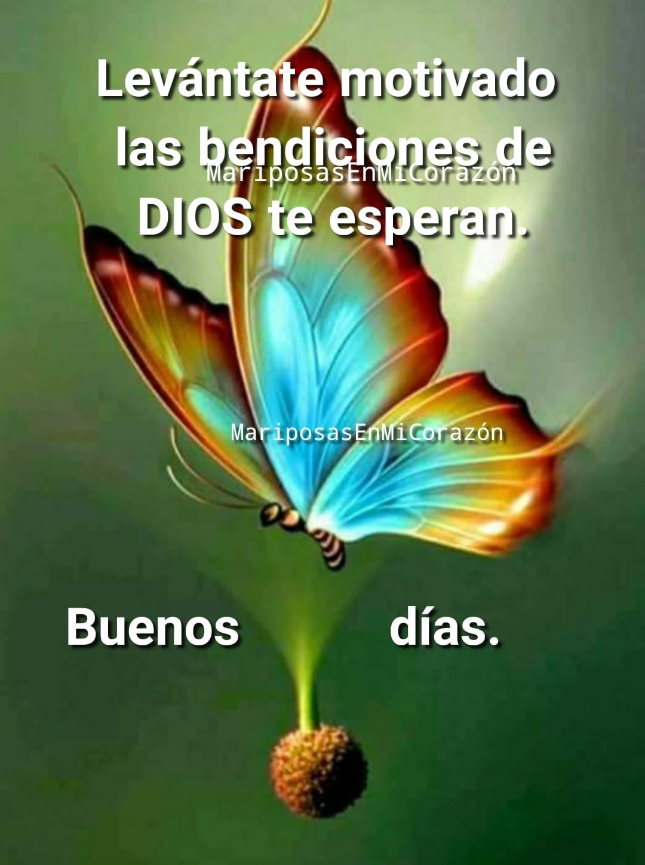 Levántate motivado las bendiciones de DIOS te esperan. Buenos días