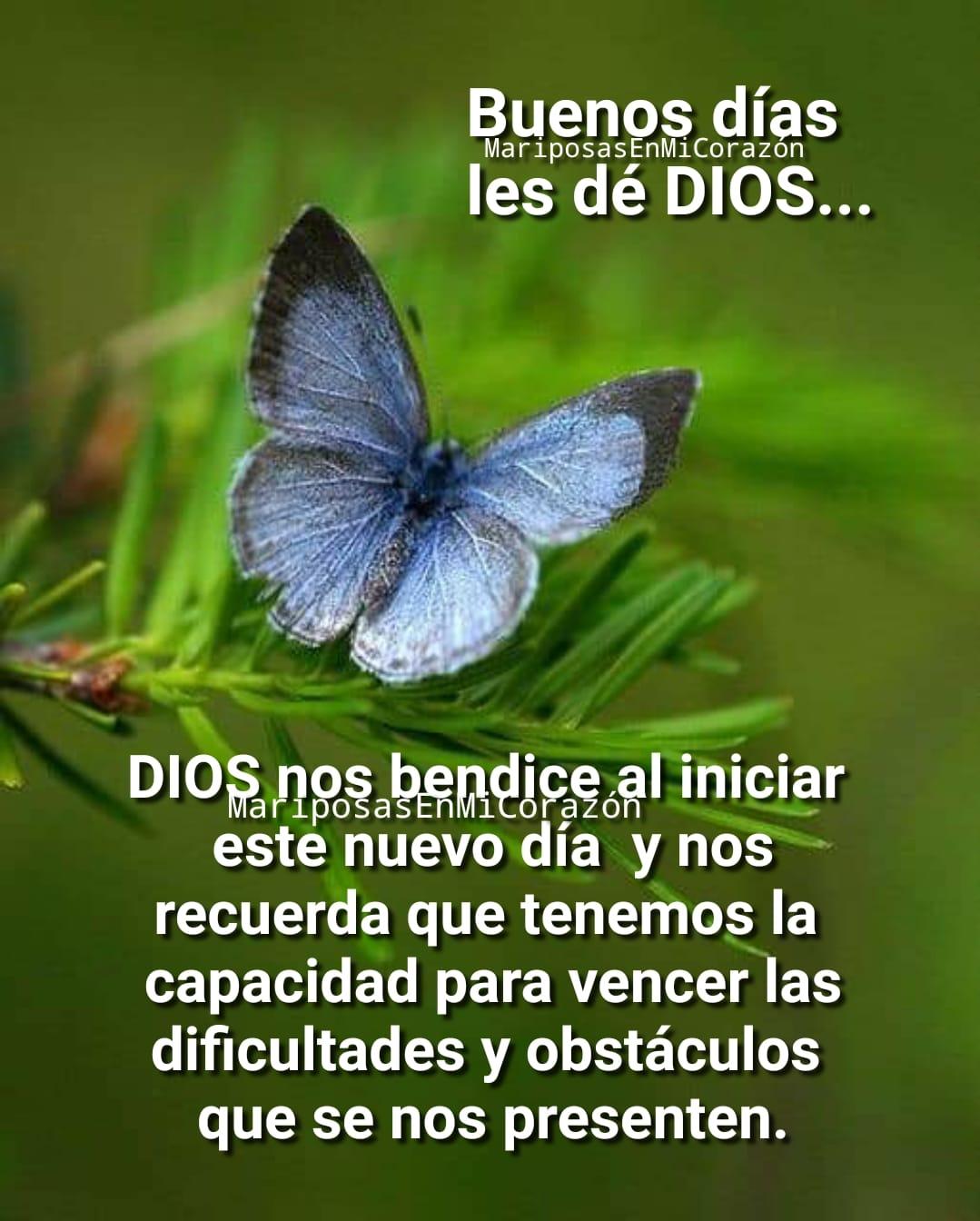 Buenos Días les dé Dios... Dios nos bendice al iniciar este nuevo día y nos recuerda que tenemos la capacidad para vencer las dificultades y obstáculos que se nos presenten.